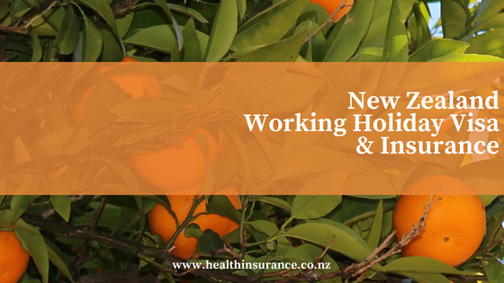 nz working holiday visa blog and image of oranges