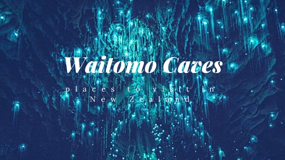 waitomo caves blog by health and travel new zealand